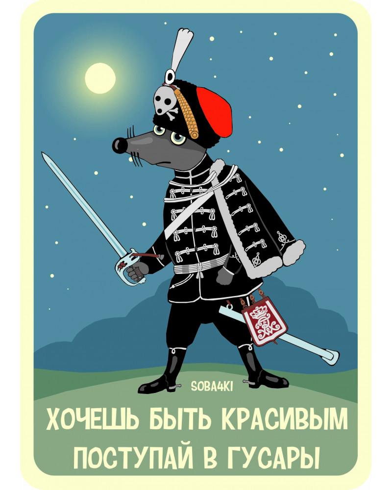 БОЛЬШОЙ ВИНИЛОВЫЙ МАГНИТ С КАРЛОМ - ГУСАР!